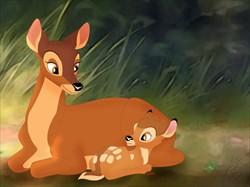 m-bambi